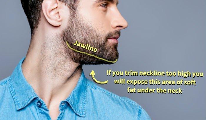Guide de coupe de barbe de 2 mois