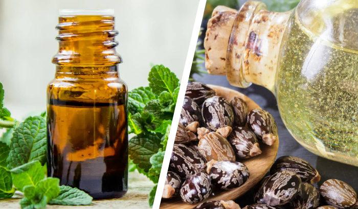 huiles de menthe poivrée et de ricin